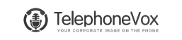 telephonevox logo grey